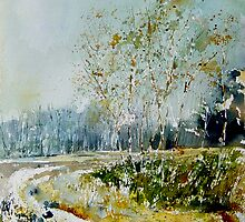 Watercolor fagnes  by calimero