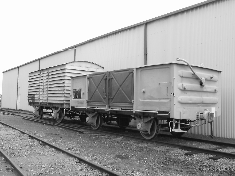 wagons by andrew peters