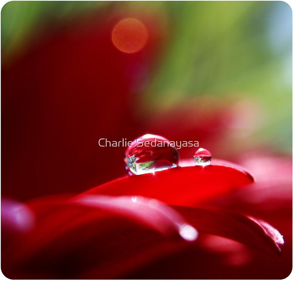 red! by Charlie Sedanayasa