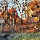 Hidden Castle/ Savanna, Illinois by Nadya Johnson
