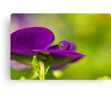 Droplet Canvas Print