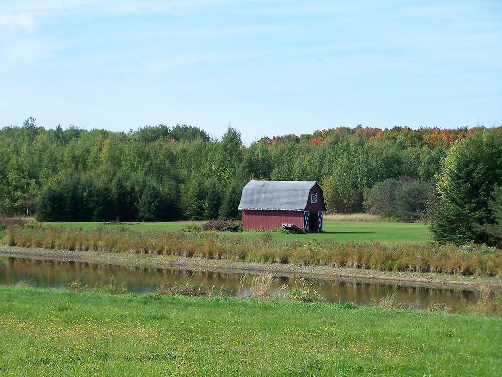 Country Scene by Gene Cyr