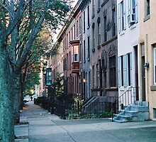 Locust St by Louise Green