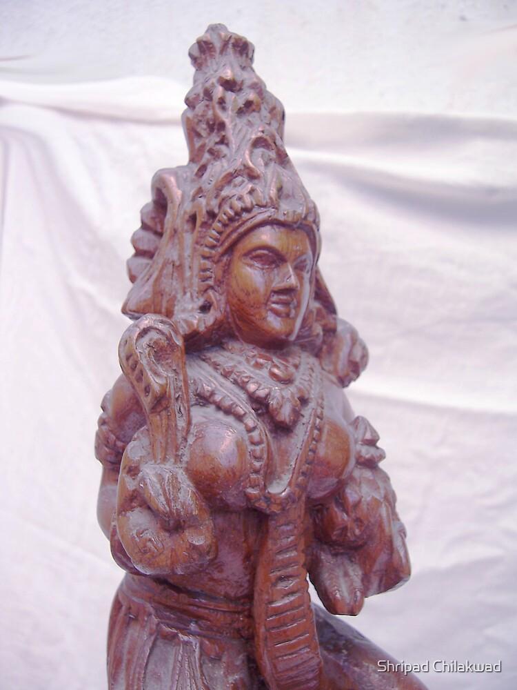 The Godess ( Closeup) by Shripad Chilakwad