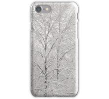 Winter Wonder iPhone Case/Skin
