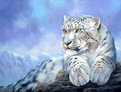 snow leopard by eric shepherd