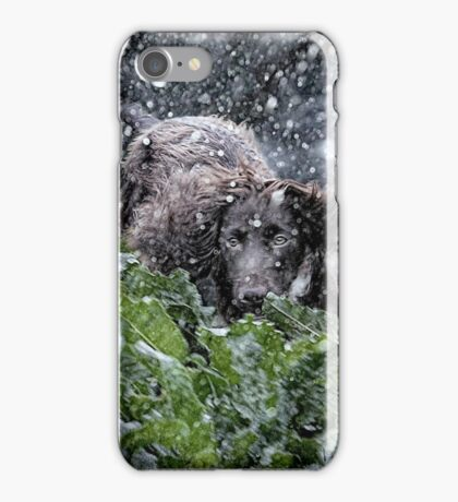 Christmas cocker iPhone Case/Skin