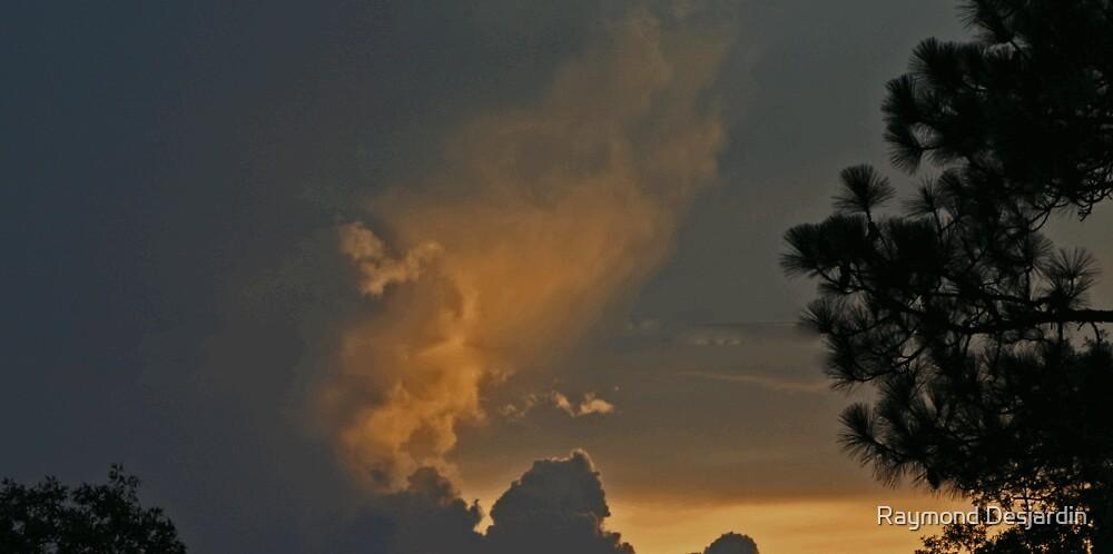 Brooksville Fl sky by Raymond Desjardin