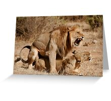 Lion Love Greeting Card