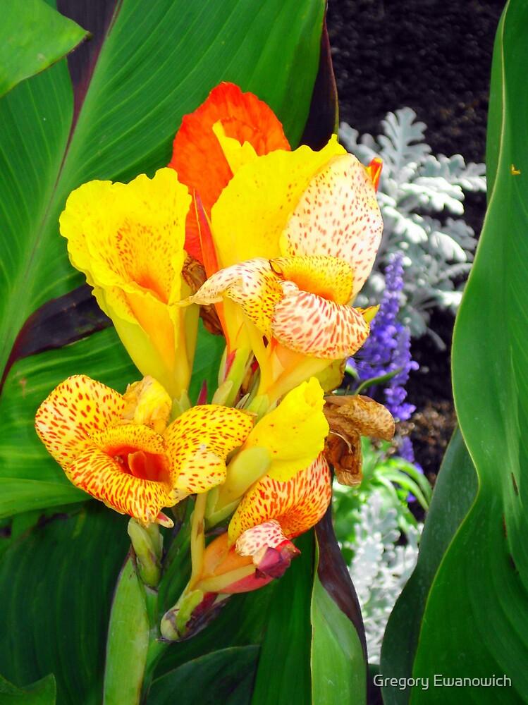 Flowers Kelowna by Gregory Ewanowich