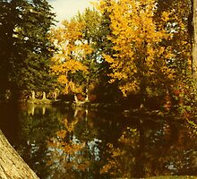 Fall Reflection  by Al Bourassa