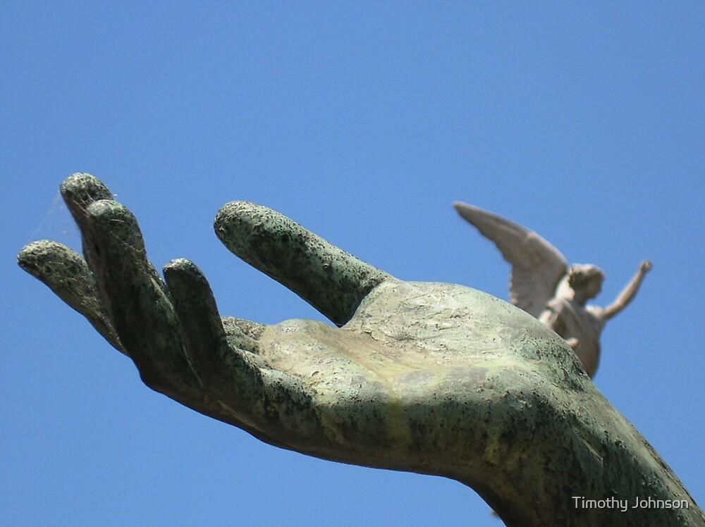Mano de un ángel by Timothy Johnson