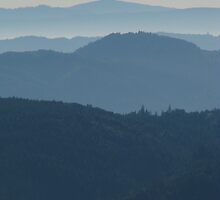 View from Horse Mountain  by Adam Mattel