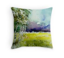watercolor050205 Throw Pillow