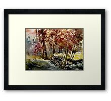 watercolor ywoigne Framed Print