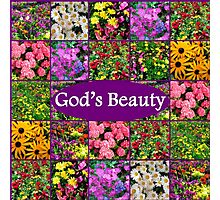 GOD'S BEAUTY IN WILD FLOWERS Photographic Print