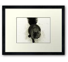 Black Squirrel in Snow Framed Print