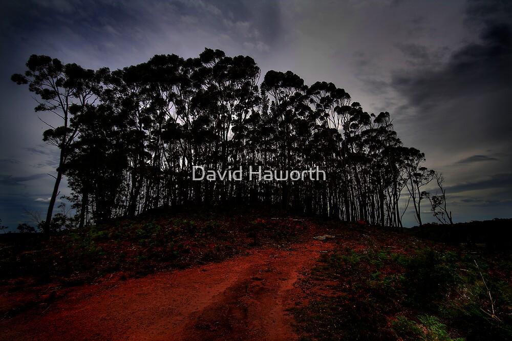 The Last Stand by David Haworth