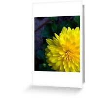 Marigold Shmarigold...I Still Think Im Pretty No Matter What You Call Me Greeting Card