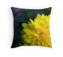 Marigold Shmarigold...I Still Think Im Pretty No Matter What You Call Me Throw Pillow