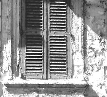 window by leahshort74