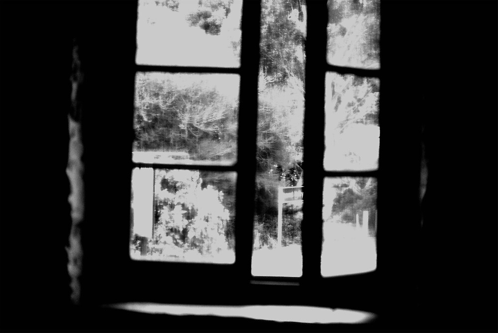 Window by Princessbren2006