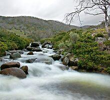 Thredbo River rapids by James  Messervy