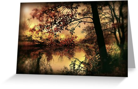 In Dreams by PhotoDream Art