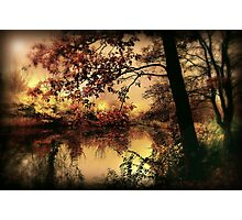 In Dreams Photographic Print