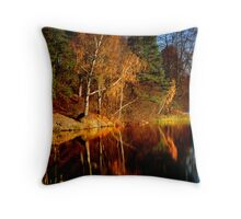 Silence in the autumn lake Throw Pillow