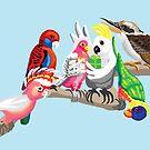 Aussie birds are so pretty by goanna