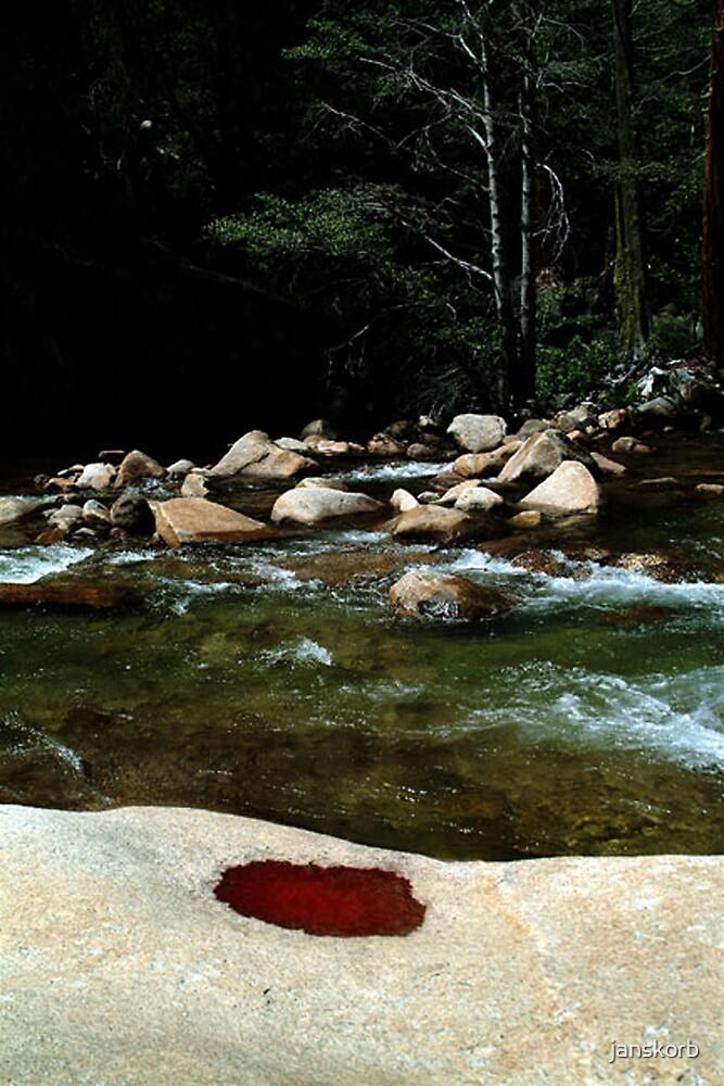 Yosemite Park by janskorb