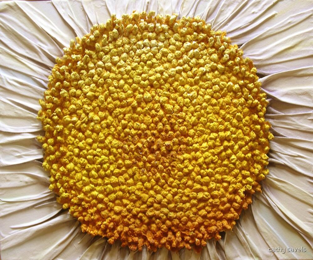 daisy daisy by cathy savels