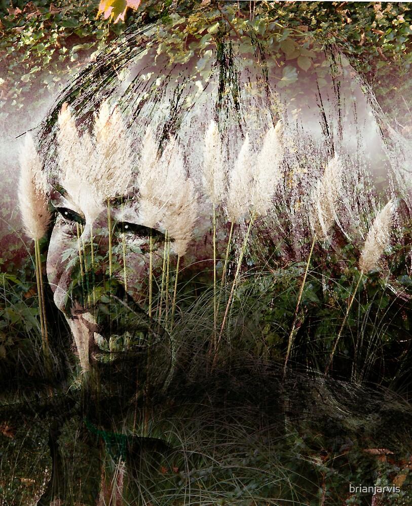 Jayne. by brianjarvis