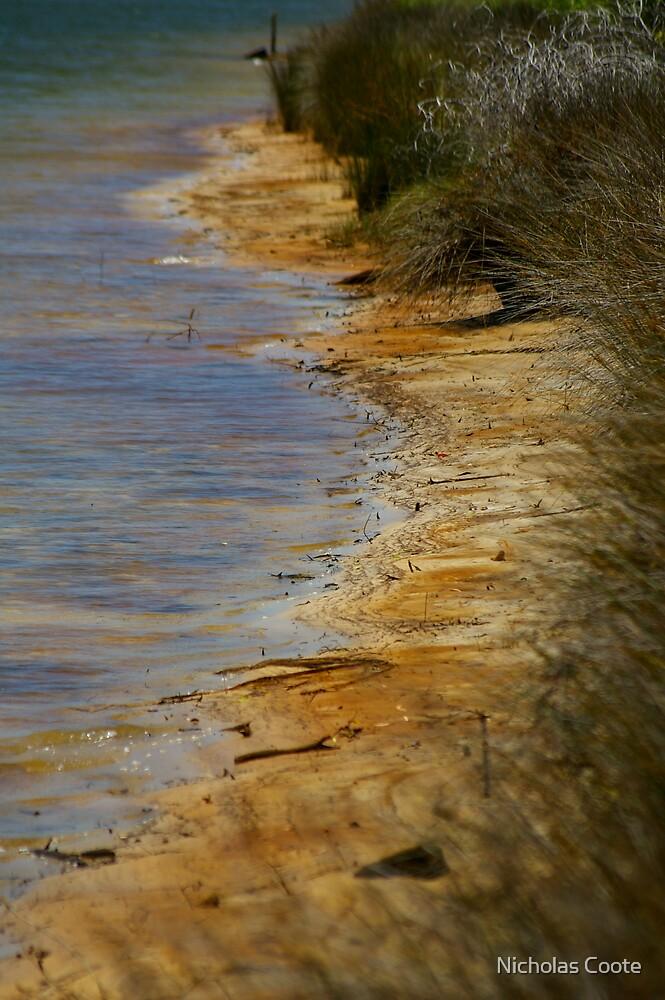 Shoreline by Nicholas Coote