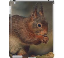 cute little squirrel iPad Case/Skin