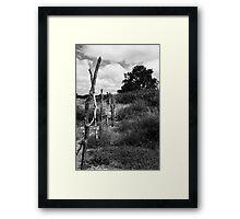 Fence Sitter Framed Print