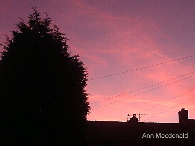 Dusk over houses by Ann Macdonald