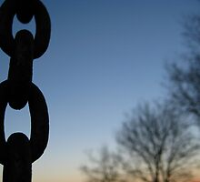 Chain w/blue sky and distant trees by chem6a