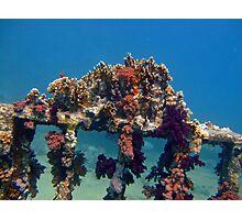jolanda reef Photographic Print