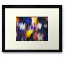 A Splash of Winter Colour Framed Print