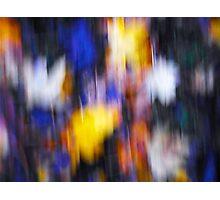A Splash of Winter Colour Photographic Print
