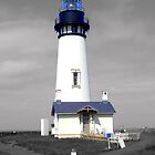 Yaquina Head by digitaldavers