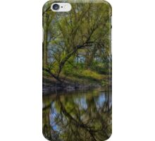trees along the stream iPhone Case/Skin