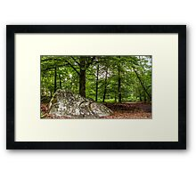 Landscape: 'Forest of Fontainebleau, Barbizon' Framed Print
