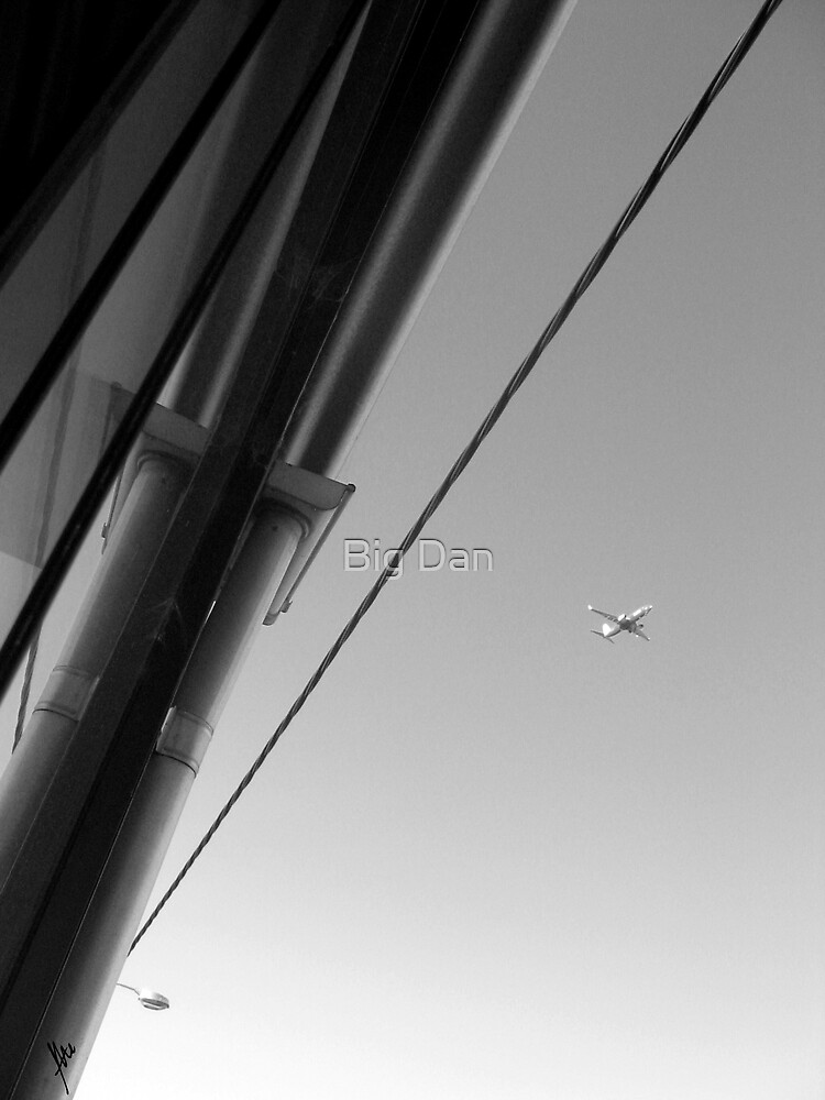 Flying High by Tate ©