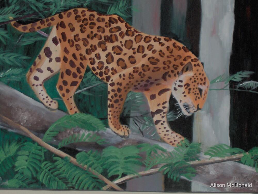 The Jaguar by Alison McDonald