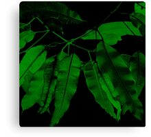 7DAY's Of SUMMER- NATURE COLLECTION-Eco green Canvas Print