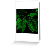7DAY's Of SUMMER- NATURE COLLECTION-Eco green Greeting Card