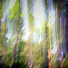 Dancing sunbeams #2 by Angela Bruno